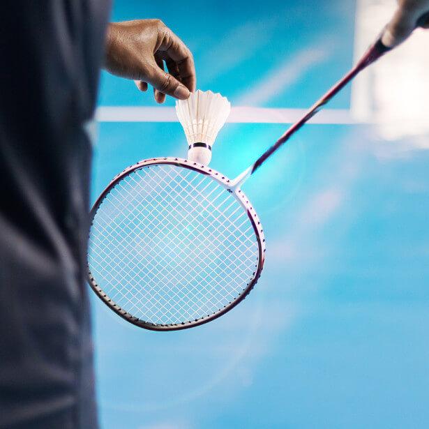 Domaine de Rocquevielle - Badminton
